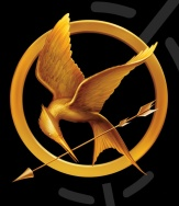 Mocking Jay from The Hunger Games Trilogy Amazon Brazil Real Birds Reference South America travel adventure