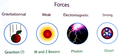 particle accelerator and fundamental forces Examples of fundamental particles are quarks and leptons and the four forces in the universe are called the strong force, the weak force, the electromagnetic force, and the gravitational force.